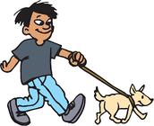 Juan no paseó el perro