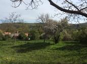 Látkép a falura