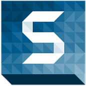 Snag Images with Snagit