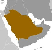 Saudi Arabia Location