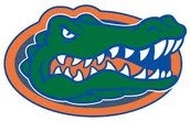 I would like to go to the University of Florida even though I hate the gators they have a good dental program. Go Dawgs!