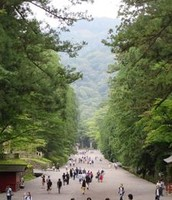 The walk up to Toshogu Shrie