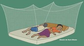 Use mosquito nets.