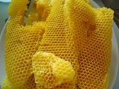 Chewing Beeswax?