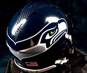 We are the Seahawks fans!!!!