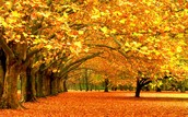 El otoño los meses