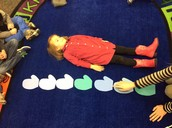 Measuring how many mittens tall we are!