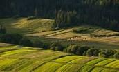 Landscpae of Poland