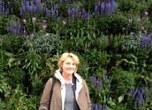 Kontaktuppgifter Trädgårdsturisten