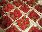 Our freshest strawberries