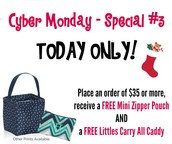 Special #3 - FREE Mini Zipper Pouch & FREE Littles Carry All Caddy