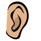 Auditory learning is when you learn through your ears