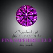 Pink Sapphire Club- $500- $999 PV