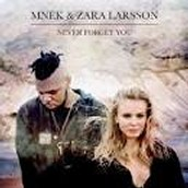 Never Forget You by MNEK & Zara Larsson