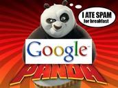 Google Panda Recovery | Google SEO | Search Engine Optimization India