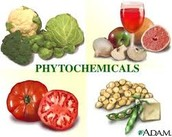 What are Phytochemicals and Functional foods?