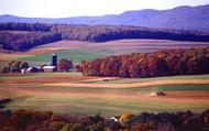 Farming Industries