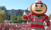 Brutus Buckeye es la mascota.