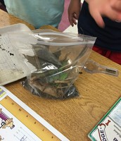 Creating Compost Bags