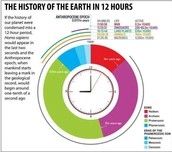 Earth in 12 Hours