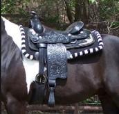 Western Saddle and Saddle Pad