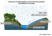 Groundwater/Runoff