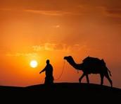 אברהם עוזב את הארץ