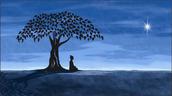 Siddhartha: protagonist