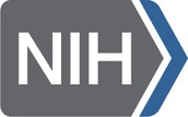 What is the NIH?