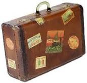 Buds suitcase