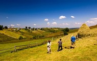 Barren European Farmland