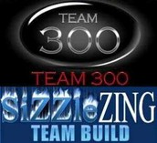 Why TEAM300 works