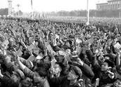 Mao's Masses