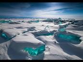 Plains & Siberia