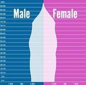 Canada's Population Pyramid (2040)