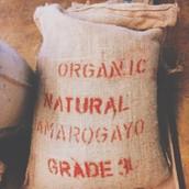 Ethiopian Amaro Gayo (Organic)