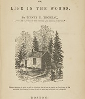Thoreau's best seller walden