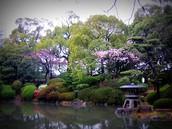 Nishinomaru Gardens