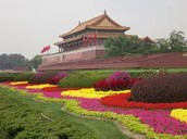Just one small garden in the forbidden city!