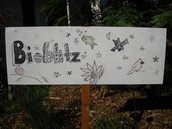 the sign I decorated for the bioblitz