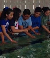 5th Grade Science Safari - Dallas Aquarium