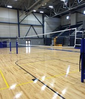 Ready for Volleyball