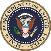 President Description