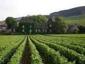 Quel temps fait-il? Qu'est-ce que à la Bourgogne?