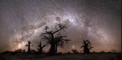 Milky way in Botswana