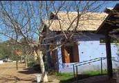 כפר האמנים באניעם