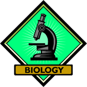 Why join the Biology Club?