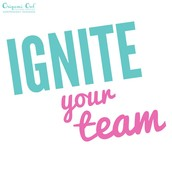 IGNITE YOUR TEAM