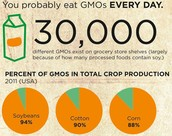 Percent of GMO in crop production