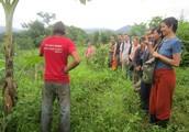 Vital Elements For permaculture design training - A Background
